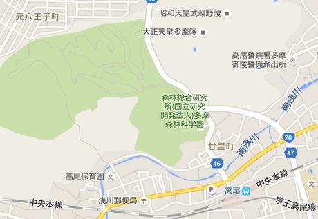 高尾地図.png