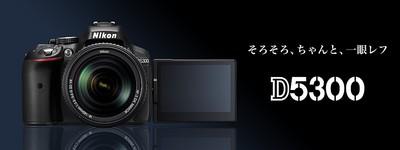 product_01.jpg